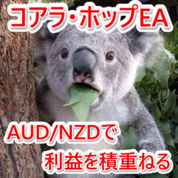 30M コアラ・ホップEA.jpg