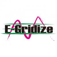 E-Gridize AUDNZD 2020/1/20~
